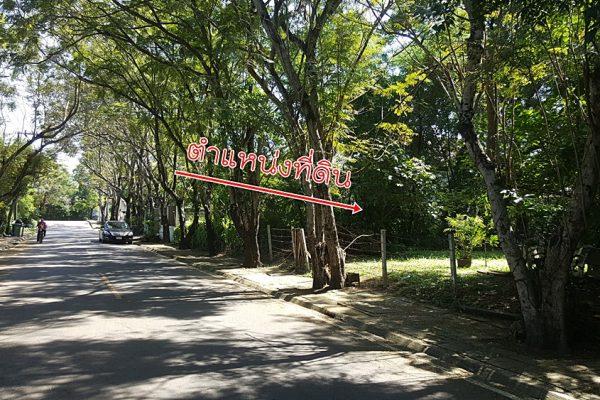 ที่ดินหมู่บ้านนวธานี สนามกอล์ฟเนื้อที่ 291 ตารางวาถนนเมนซอย3